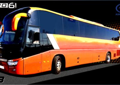 Bus Discreccional C13